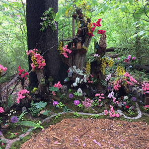 Mission Oaks Fairy Garden Update 1