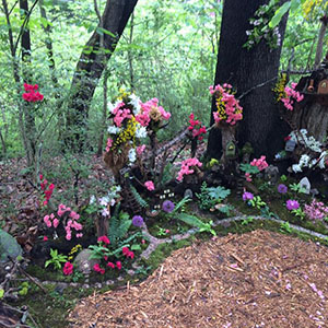 Mission Oaks Fairy Garden Update 2