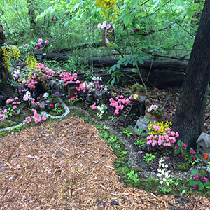 Mission Oaks Fairy Garden Update 3
