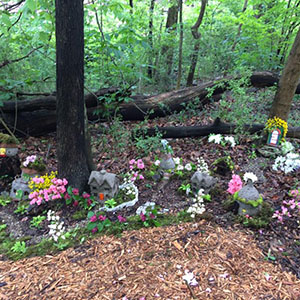 Mission Oaks Fairy Garden Update 4