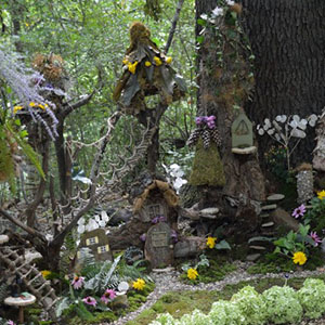 Mission Oaks Gardens Fairy Garden 1