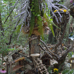 Mission Oaks Gardens Fairy Garden 3