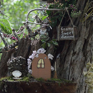 Mission Oaks Gardens Fairy Garden 4